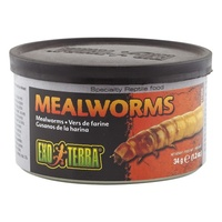 Exo Terra Mealworms Reptile Food - 34g
