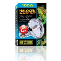 Exo Terra Halogen Basking Spot Lamp for Reptiles - 100 Watt