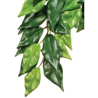 Exo Terra Hanging Rainforest Plant - Ficus - Large