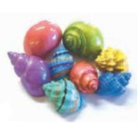 Hermit Crab Spare Shell - Painted - Large