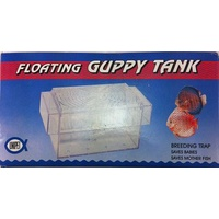 Floating Guppy Tank
