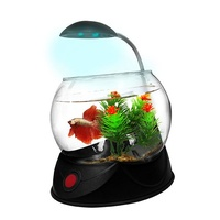 Aquatopia Betta Bowl with Light - 1.8L - Black