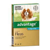 Advantage for Dogs 4-10 kgs - 4 Pack - Teal