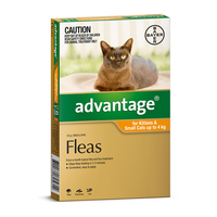 Advantage for Cats up to 4 kgs - 6 Pack - Orange