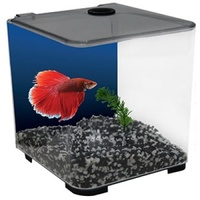 Aqua One BettaStyle Acrylic Tank - 3L - Charcoal