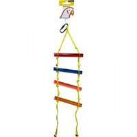 Avi One Parrot Toy Acrylic Ladder