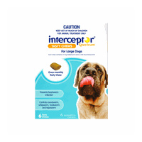 Interceptor Spectrum for Large Dogs 22-45 kgs - 6 Pack - Blue