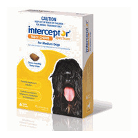 Interceptor Spectrum for Medium Dogs 11-22 kgs - 3 Pack - Yellow