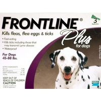 Frontline Plus for Large Dogs 20-40 kgs - 12 Pack - Purple