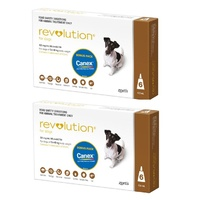 Revolution for Dogs 5.1-10 kgs - 12 Pack - Brown - 2 Extra Vials Free