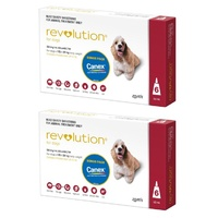 Revolution for Dogs 10.1-20 kgs - 12 Pack - Red - 2 Extra Vials Free