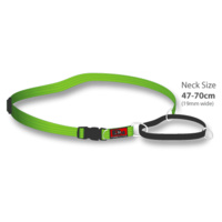 Black Dog Training Collar - Extra Large