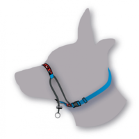 Black Dog Training Halter - Mini/X-Small (Black)