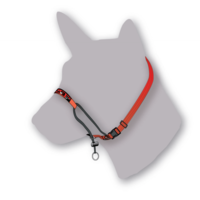 Black Dog Training Halter - Small (Black)